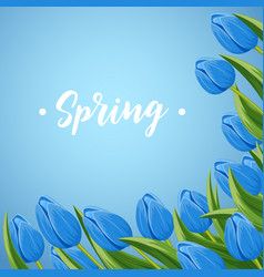 Spring banner with blooming tulip vector