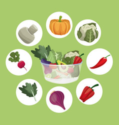 vegetables fresh ingredients vegetarian food vector image
