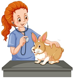 Vet examining little bunny vector