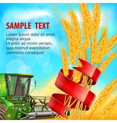 Ears of wheat with ribbon vector
