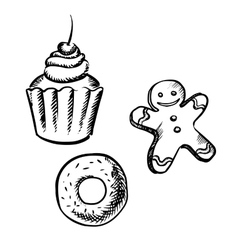 Cupcake gingerbread man and donut sketches vector image