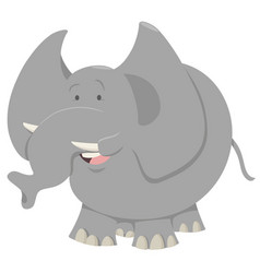 Elephant cartoon animal vector