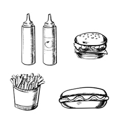 French fries burger hot dog and condiment vector