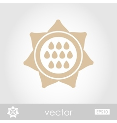 Sunflower icon vector