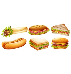 Different kind of fastfood vector