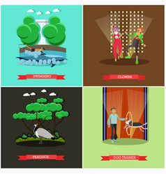 Set of dolphinarium and circus show posters vector