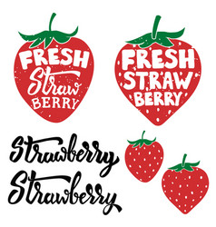 Fresh strawberry labels isolated on white vector