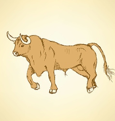 Sketch angry bull in vintage style vector