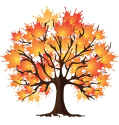 Autumn tree Maple vector image vector image