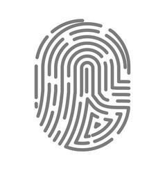 fingerprint or fingertip print pattern vector image vector image