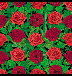 seamless pattern of red roses and leaves on black vector image vector image