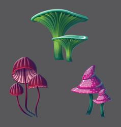 a high quality fantasy mushrooms set vector image