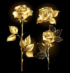Set of Golden Roses vector image
