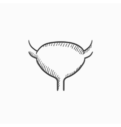 Urinary bladder sketch icon vector