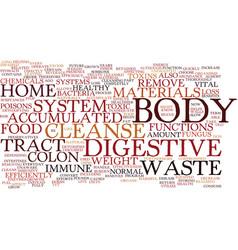 Benefits of the memory foam mattress text vector