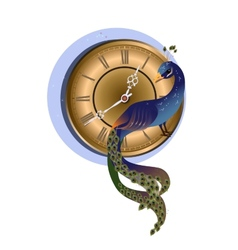 Peacock with clock vector image