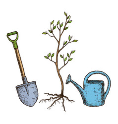 Sketch tree planting vector
