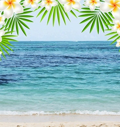 Summer time poster with frangipani vector