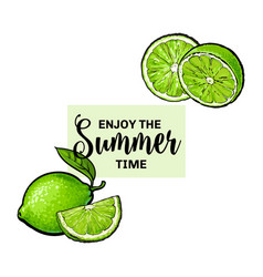 Enjoy summer banner postcard design with lime vector