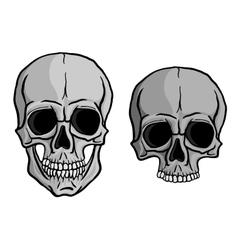 Human Skulls set vector image vector image