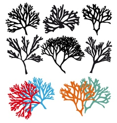 Coral reefs set vector