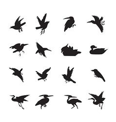 Bird and duck siluate style black color vector