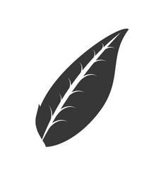 Organic leave food emblem outline vector