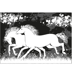 Running black and white horses vector