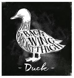 Duck cutting scheme chalk vector