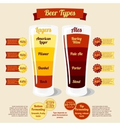 Types of beer infographic with places for your vector