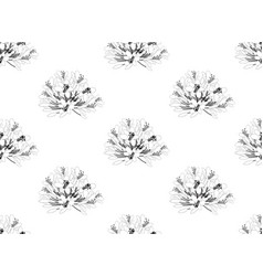 agapanthus on white background vector image