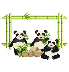Border template with cute panda and bamboo vector