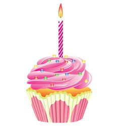 cupcake with burning candle vector image
