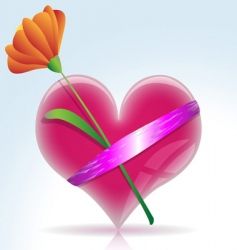 gift heart vector image