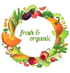 Organic vegetables round composition vector