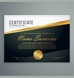 certificate design with golden stripe vector image