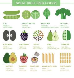 Great high fiber foods vector