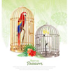 bird market poster background vector image