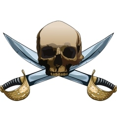 Jolly roger with swords vector