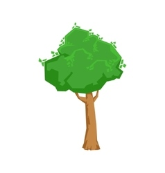 Tall green lime tree natural landscape design vector