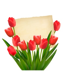 Red tulips with happy mothers day note vector