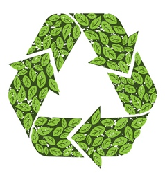 leaves recycle sign vector image