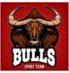 Bulls Mascot vector image vector image