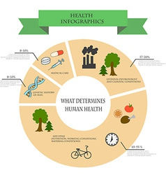 Depending infographics health from external and vector