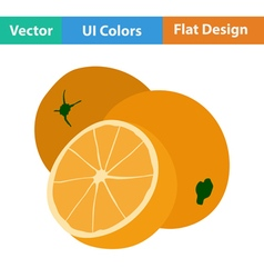 Flat design icon of Orange vector image vector image