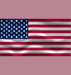 waving usa flag for your vector image vector image