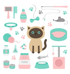 Cute siamese cat in flat design style suff set paw vector