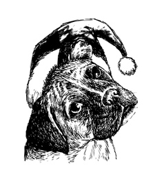 boxer with christmas hat vector image