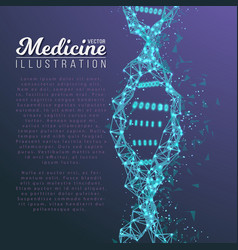 dna spiral medical molecule structure vector image