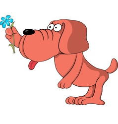 dog gives a flower vector image vector image